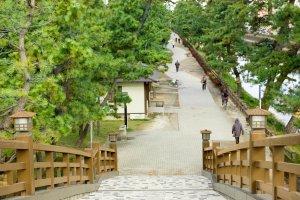 長さ63.5m、幅3.5mもある百代橋。階段を昇ると、その高さと見晴らしのよさに圧倒される。