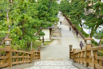 <p>The 63.5m long, 3.5m wide Hyakutai&nbsp;(hundred generations) Bridge. You&#39;ll be overwhelmed by the impressive view when ascending the stairs&nbsp;&nbsp;</p>