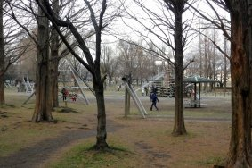 Парк отдыха Михаси в городе Сайтама