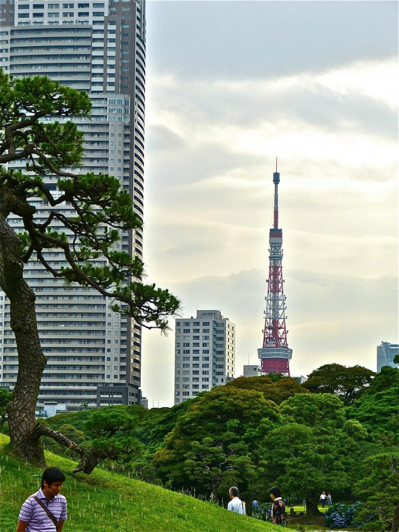 <p>Tokyo Tower is not far from the garden.</p>