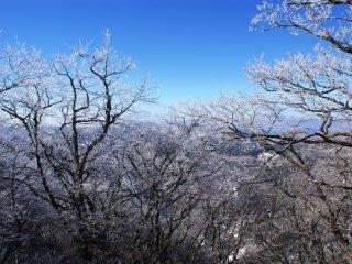 Область Гомадан - единственное заснеженное место в Вакаяме зимой