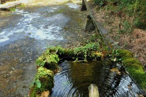 A natural spring fountain, or mizuki, greets you. If you are thirsty, stop and have a drink!