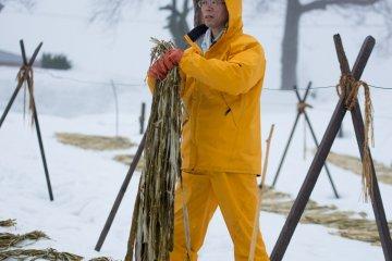 <p>Kouzo&nbsp;bark snow bleaching</p>