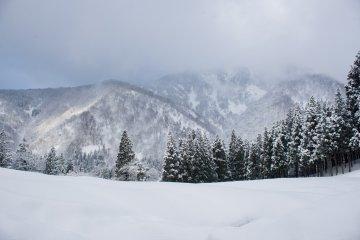 <p>Mountain view</p>