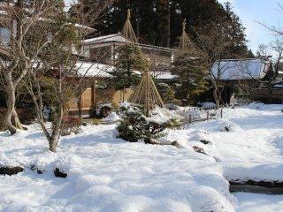 Rock garden (under snow!)