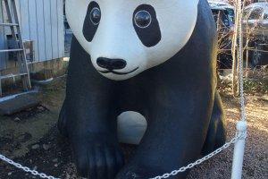 Một con gấu trúc trước một tiệm bánh. Makio Yajima là một nghệ sĩ chuyên về nghệ thuật xốp. Các tác phẩm của cô có thể được nhìn thấy quanh hẻm Penny Candy Alley. Hãy cố gắng để ý chúng khi bạn đi bộ xung quanh!