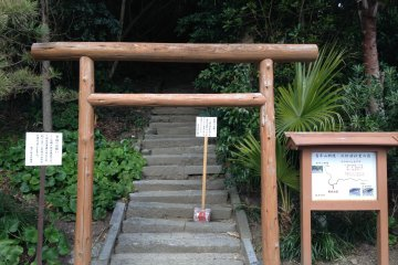 <p>This is the start point. Through the torii and up the steps!</p>