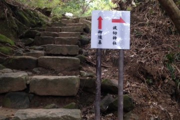 <p>This sign is about 100 m up the steps. Make sure you go right!</p>