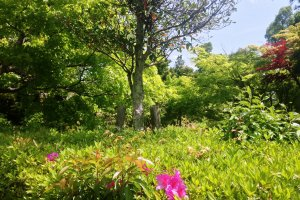 A gentle breeze awakens your spirit in this spacious and unhurried garden