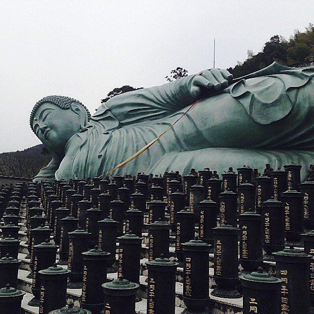 이 동상은 나라나 가마쿠라와 같은 도시에서 발견된 다른 동상과 비교하여 실제적으로 아주 새롭지만 (1995년에 완료) 믿을 수 없을만큼 엄청난 것이다. 이 청동 네한조는 길이가 약 41미터, 높이가 11미터, 무게가 약 300톤이다