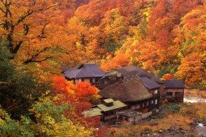 O Kuro-yu Onsen, que faz parte dos Nyuto Onsen - aspecto no outono