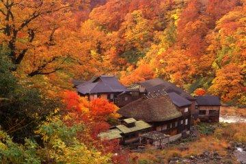 <p>Nyuto Onsen&#39;s Kuroi Onsen in the autumn season</p>