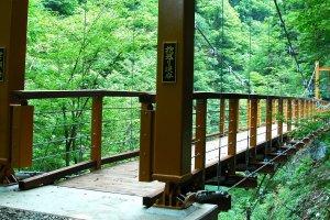 抱返り渓谷にかかる誓願橋、初夏の様子。