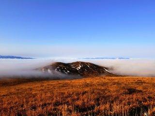残念ながら今回、富士山は雲がかかって確認出来ない!