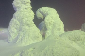The Snow Monsters of Zao