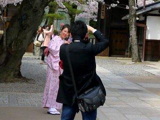 Bergaya di bawah bunga sakura
