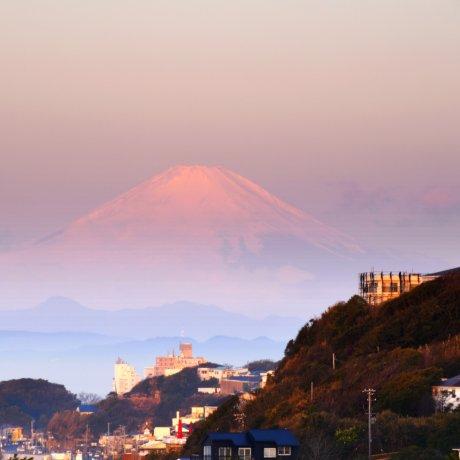 Waking Up To Mt. Fuji in Kamakura