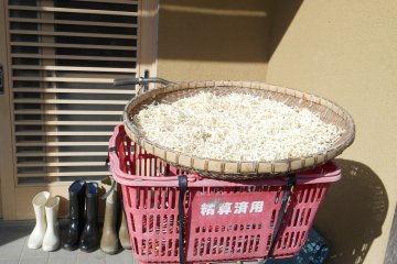 <p>The daikon&nbsp;is drying in this basket</p>