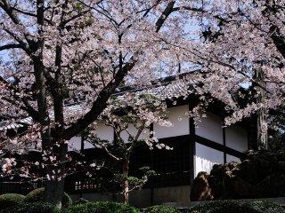 Sebuah monumen puisi Bokusui dalam taman Jepang Kokawadera