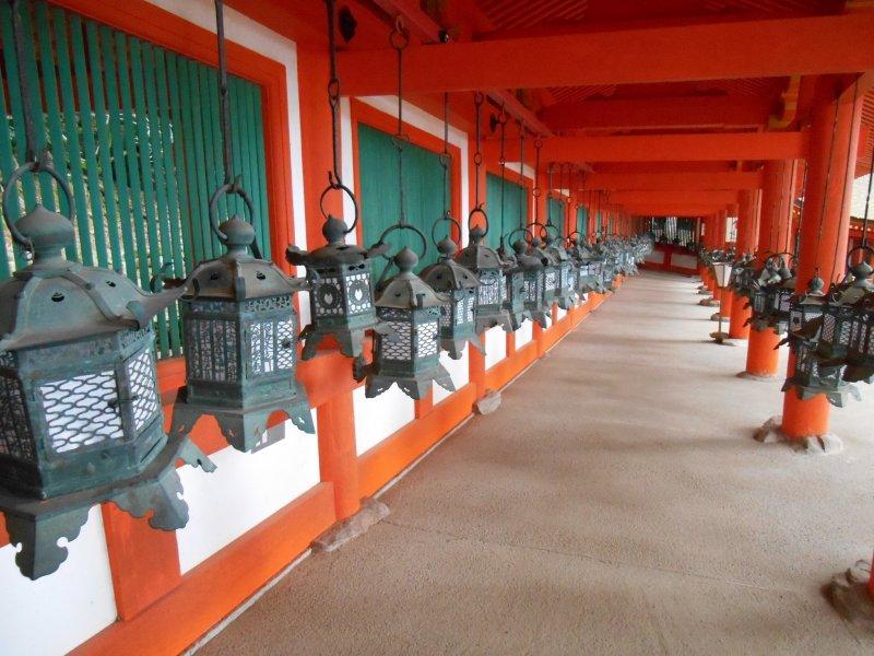 <p>East cloister lanterns</p>