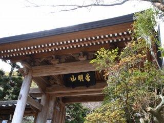 鎌倉成就院の山門を見上げる