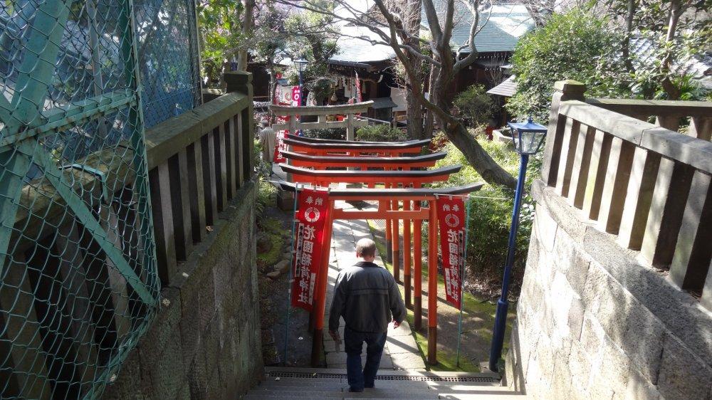 ประตูโทริที่ศาลเจ้าโกะโจะเท็น (Gojoten)