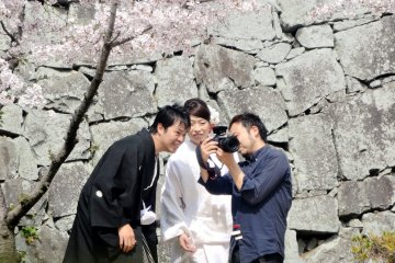 <p>A bride and groom pause to look at a photo taken of them under a cherry tree</p>