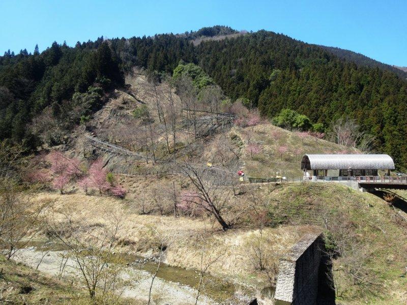 <p>A view of the mini monorail course at Iya Fureai Park</p>