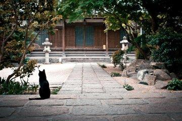在福冈的一天
