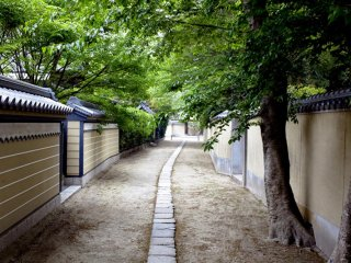 Behind Tochoji temple you can find a maze of quiet back streets