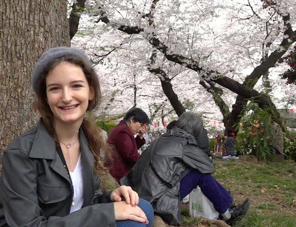 Apreciação de Sakura no Parque Ueno