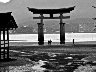 At low tide, you can walk out to the the torii gate for a close-up view