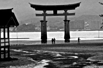 <p>At low tide, you can walk out to the the torii gate for a close-up view</p>