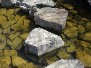 Stepping stones lead across the stream