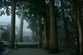 春の焼山寺
