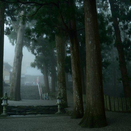 Kuil Shosan-ji (Musim Semi)