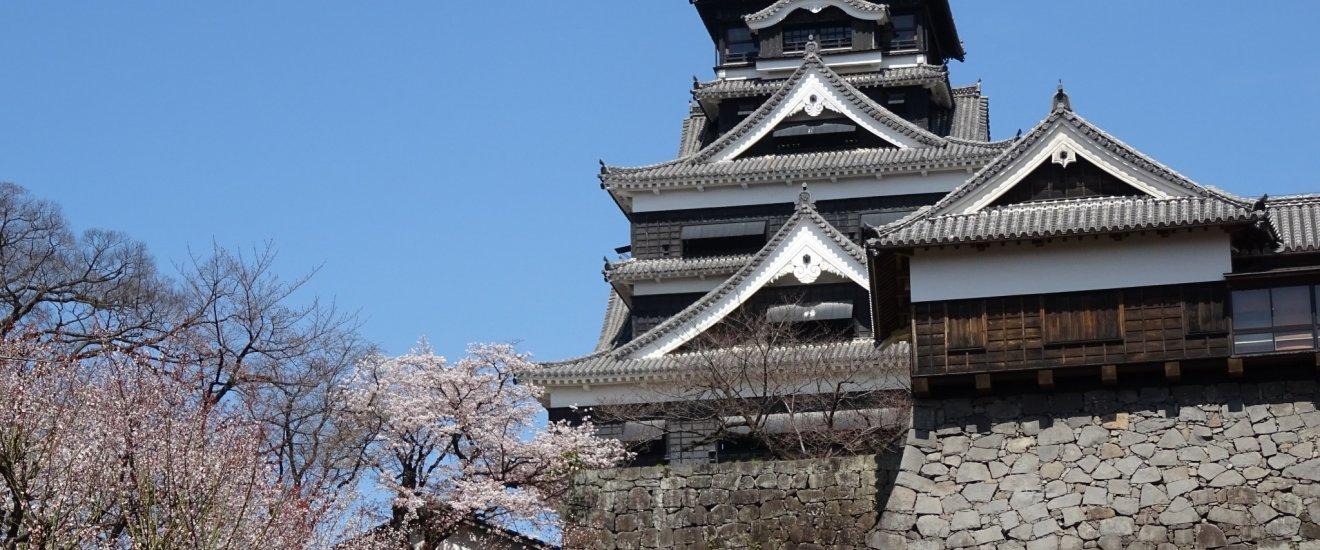 ภาพดอกซากุระกับปราสาทสีเข้ม และฉากหลังสีฟ้าสดใส สวยงามยากจะลืมเลือน