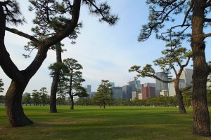 สวนญี่ปุ่นสวยๆ