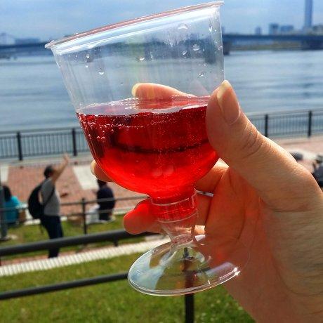 토요스 공원 일본 와인 페스티벌