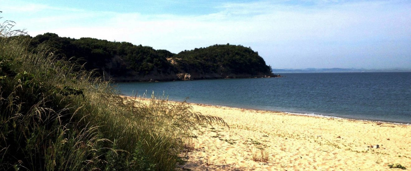 The peaceful and almost forlorn beauty of this deserted beach is the setting for a surprising museum.