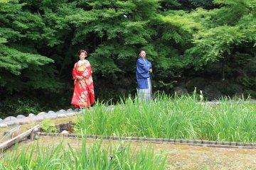 <p>A romantic scene amongst a backdrop of pleasant nature</p>
