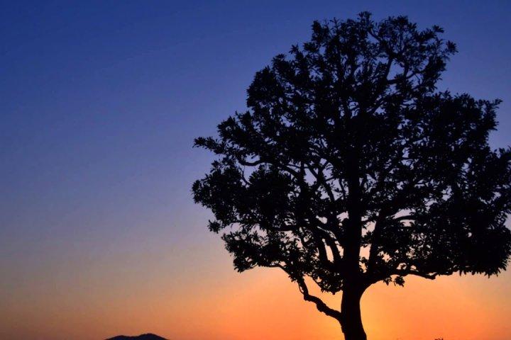 Crepúsculo no Parque Nishiyama em Fukui