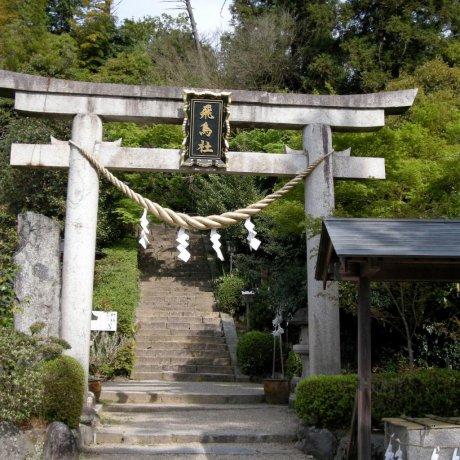Asuka ni Imasu Shrine