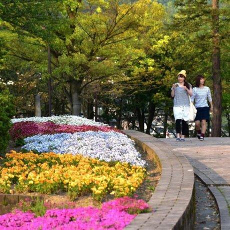 Holiday at Fukui Green Center