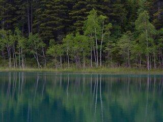 이 호수에 비친 반사는 독특한 것이다