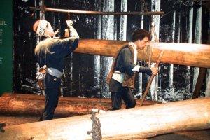 Exhibit showing lumber industry