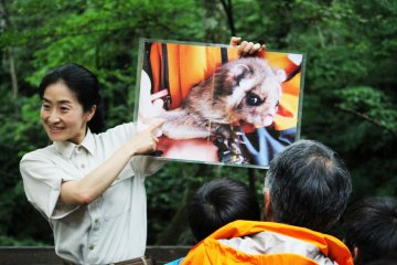 <p>Our guide explains the musasabi&#39;s habitat, anatomy, and food</p>