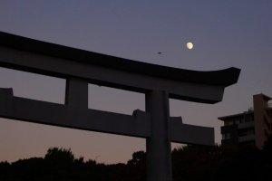 Torii par pleine lune