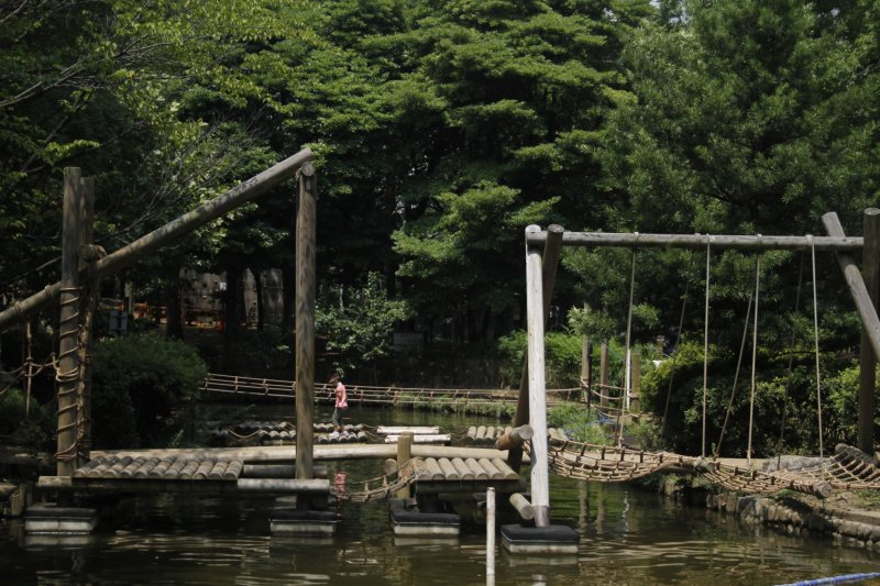 <p>This adventure park is large and great for children.&nbsp;</p>
