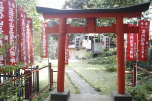A small red Tori gate inside the grounds of Naritasan Ennoji Temple.